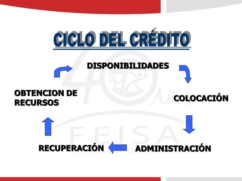 CICLO DEL CRÉDITO DISPONIBILIDADES OBTENCION DE RECURSOS COLOCACIÓN