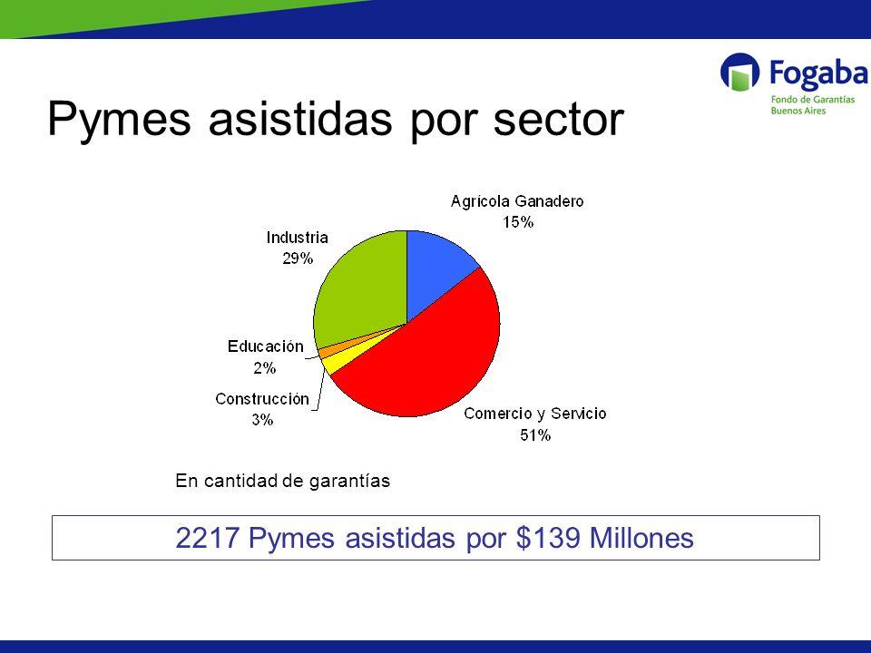 Pymes asistidas por sector