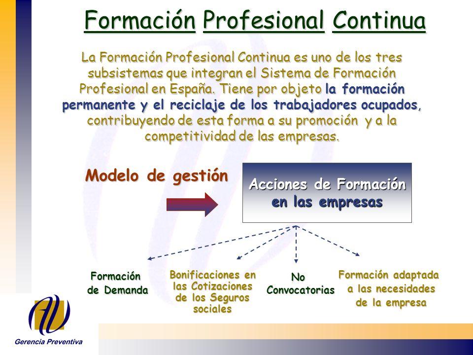 Formación Profesional Continua