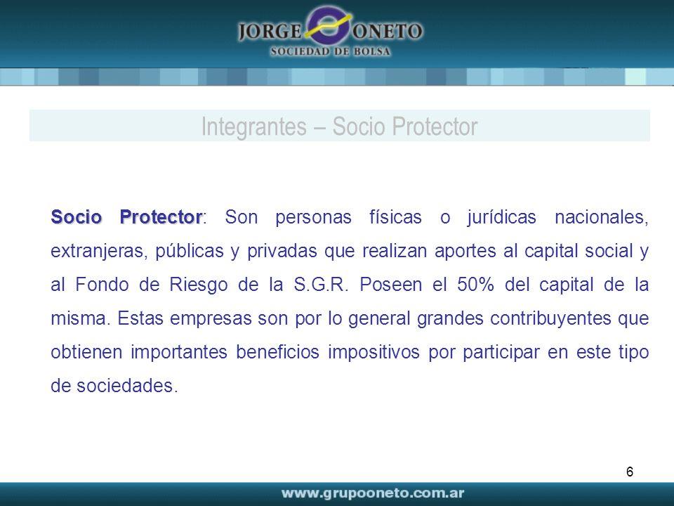 Integrantes – Socio Protector