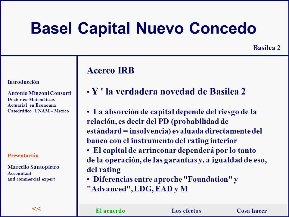 Basel Capital Nuevo Concedo