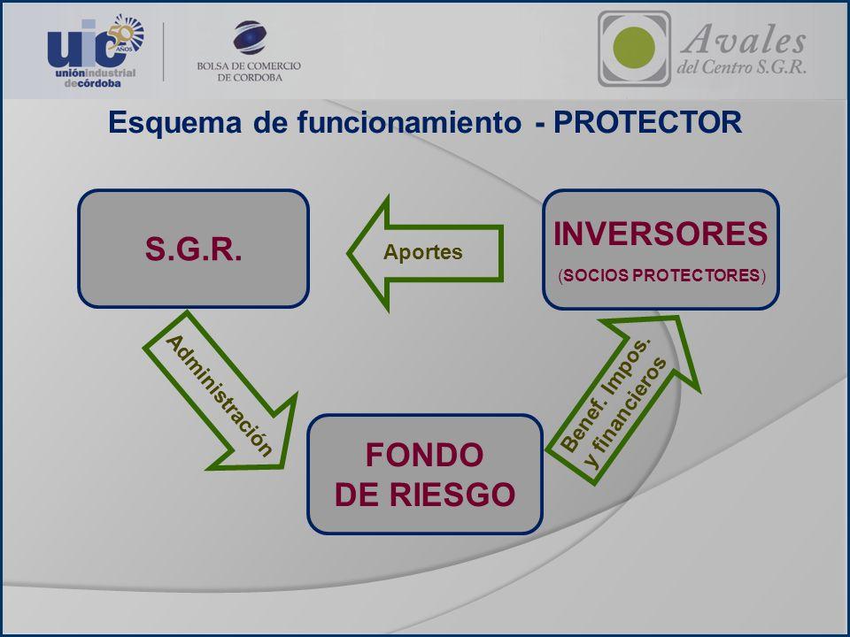 Esquema de funcionamiento - PROTECTOR