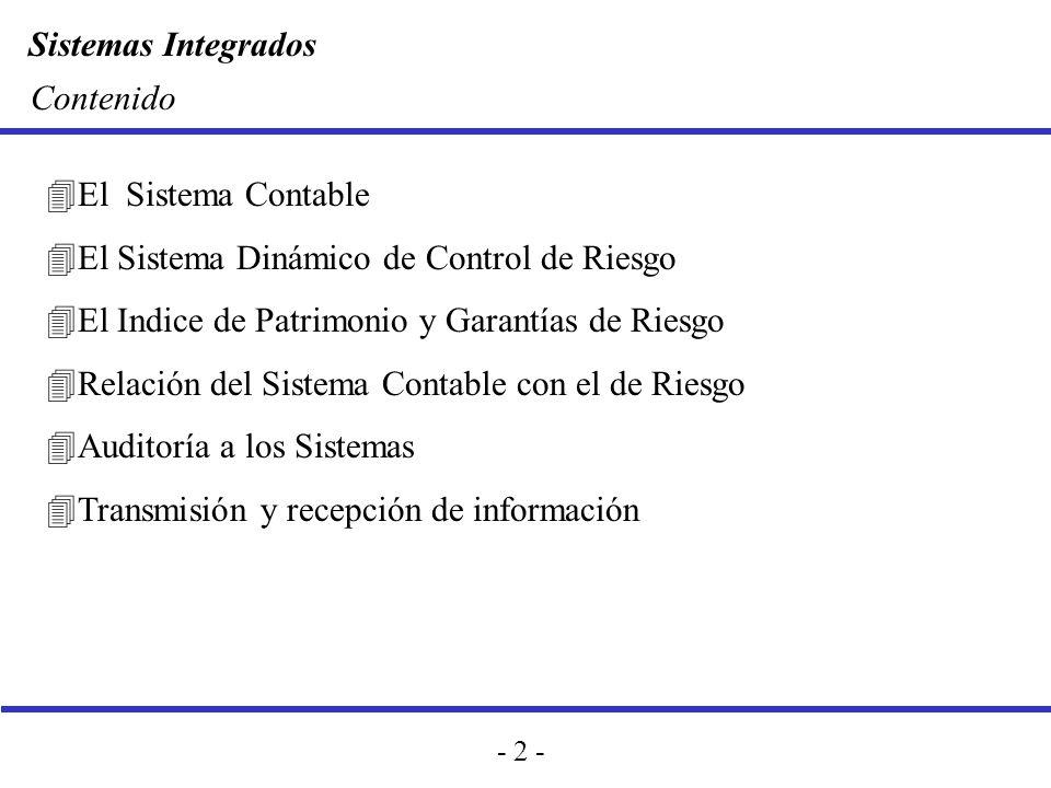 Contenido El Sistema Contable. El Sistema Dinámico de Control de Riesgo. El Indice de Patrimonio y Garantías de Riesgo.