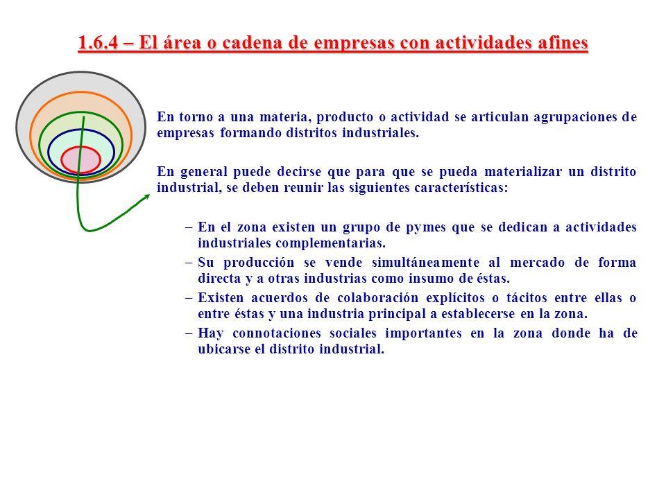 1.6.4 – El área o cadena de empresas con actividades afines