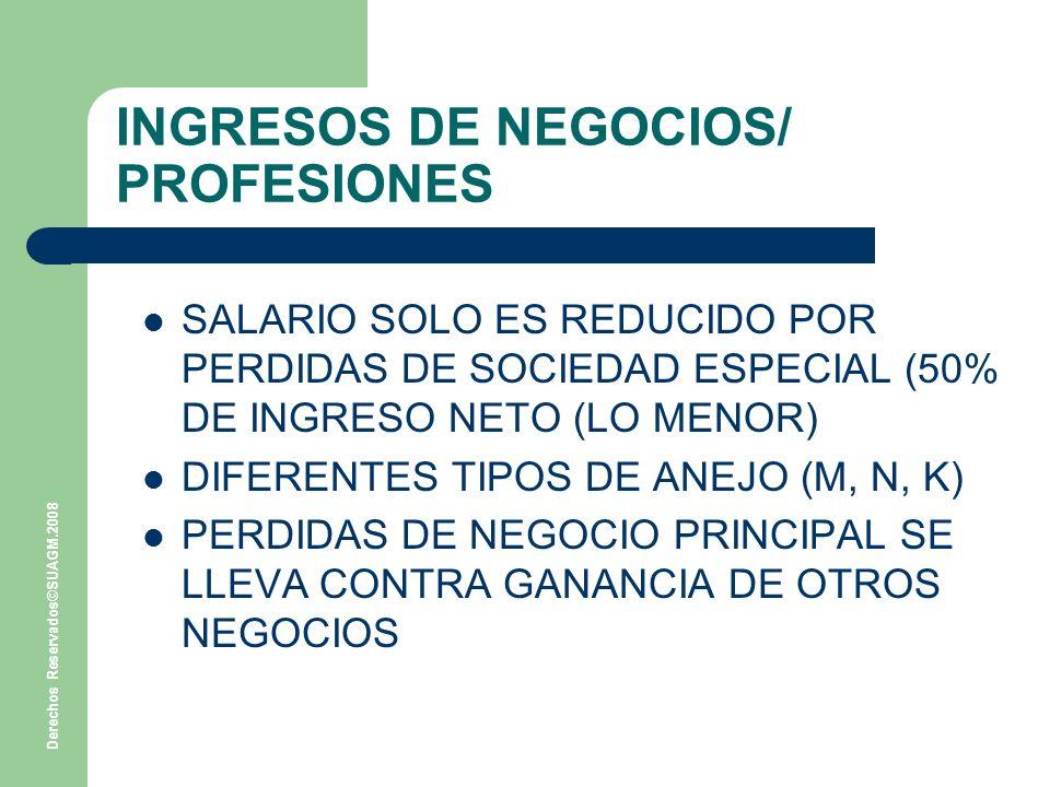 INGRESOS DE NEGOCIOS/ PROFESIONES