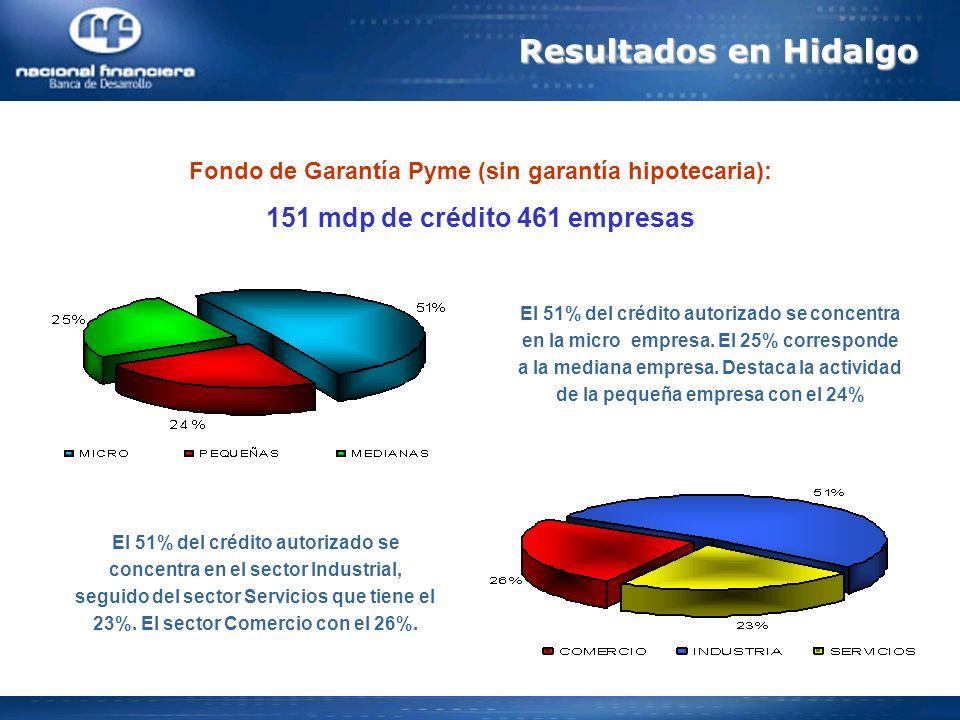 Resultados en Hidalgo 151 mdp de crédito 461 empresas