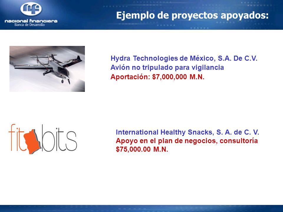 Ejemplo de proyectos apoyados:
