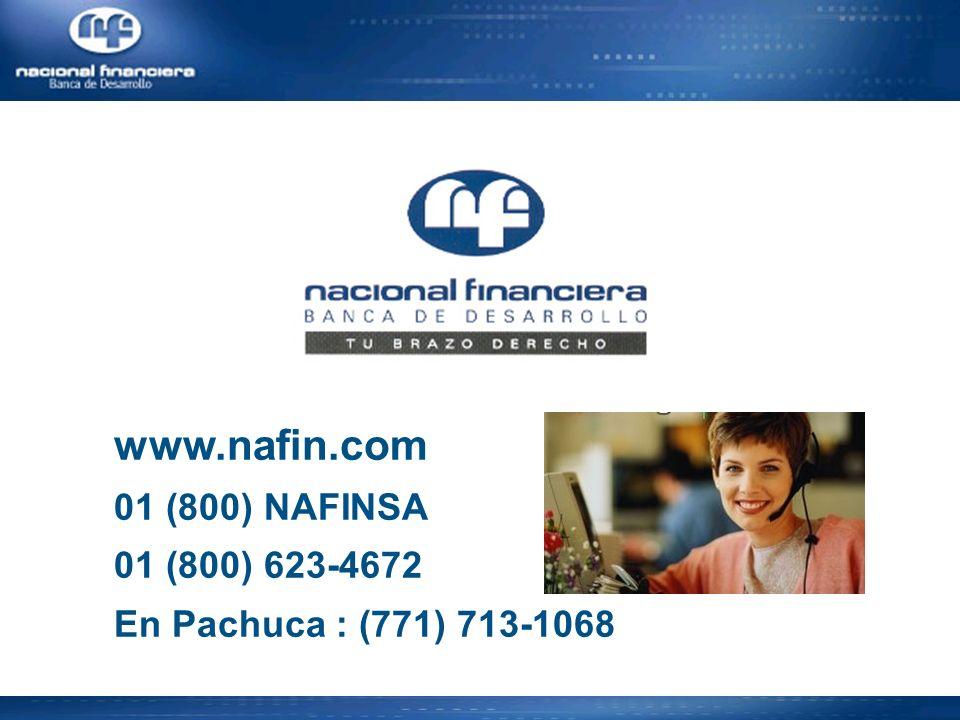 www.nafin.com 01 (800) NAFINSA 01 (800) 623-4672