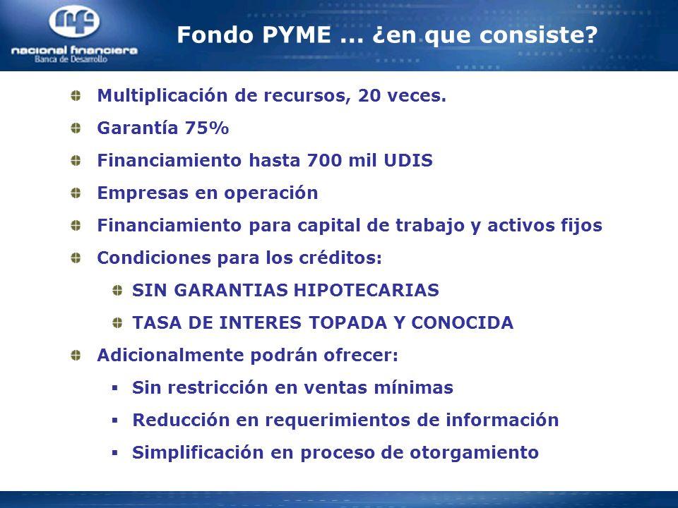 Fondo PYME ... ¿en que consiste