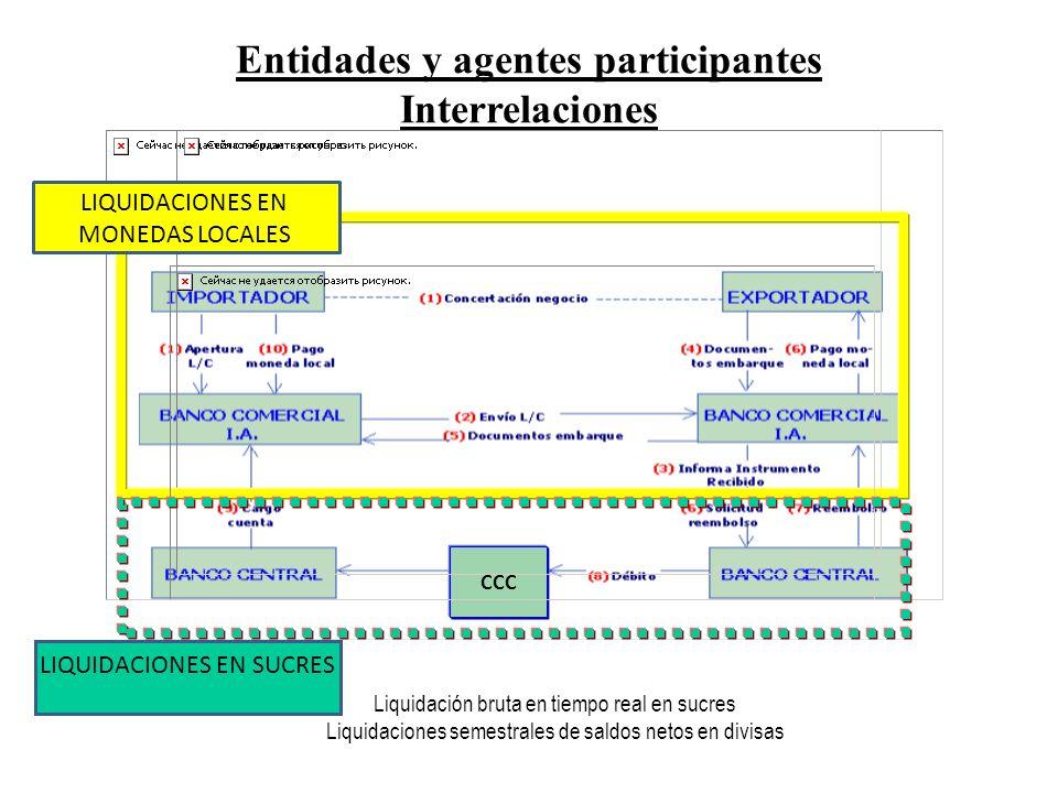 Entidades y agentes participantes