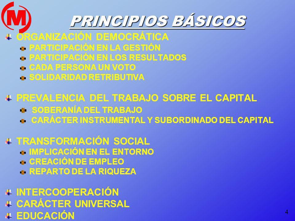 PRINCIPIOS BÁSICOS ORGANIZACIÓN DEMOCRÁTICA