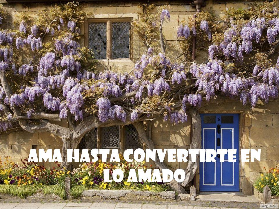AMA HASTA CONVERTIRTE EN