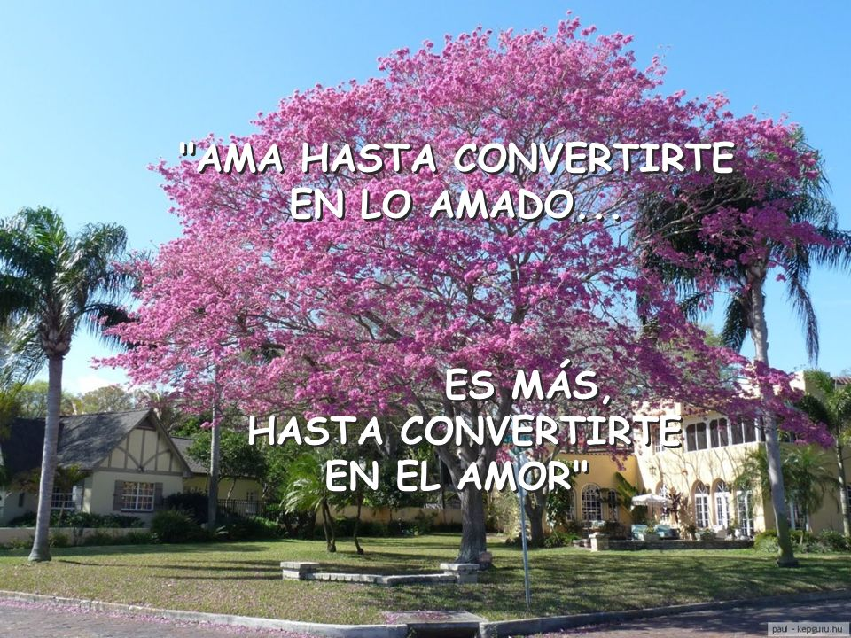 AMA HASTA CONVERTIRTE EN LO AMADO... ES MÁS, HASTA CONVERTIRTE EN EL AMOR