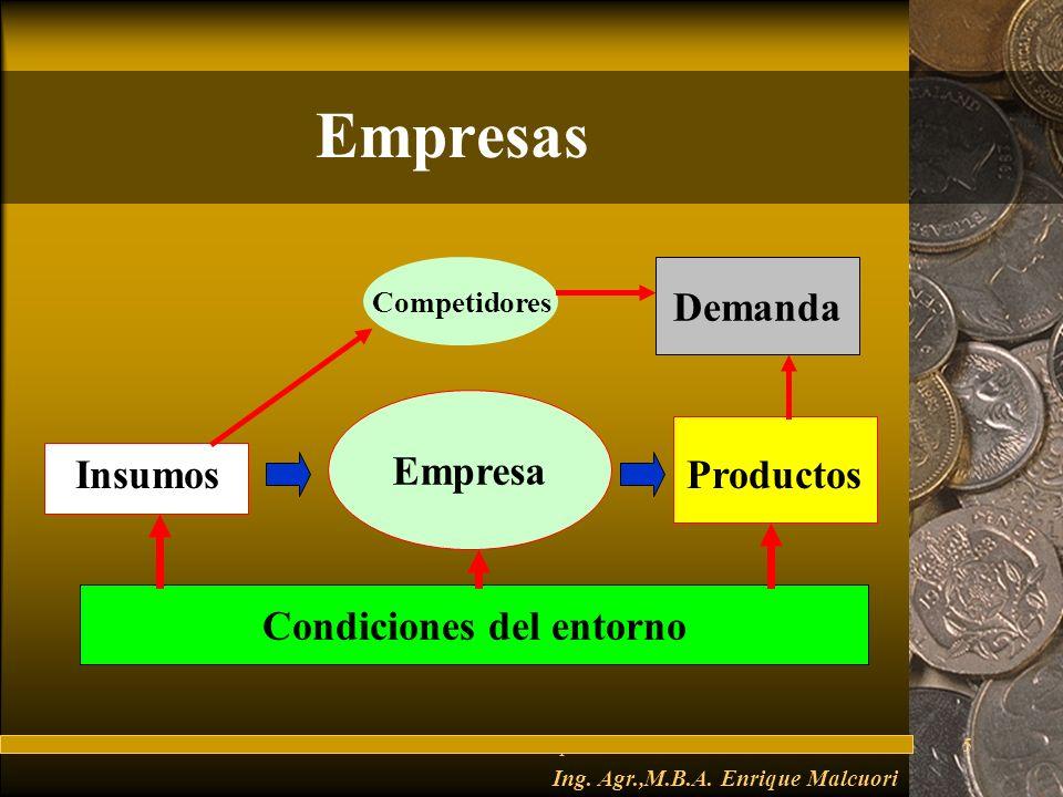 Condiciones del entorno Ing. Agr.,M.B.A. Enrique Malcuori