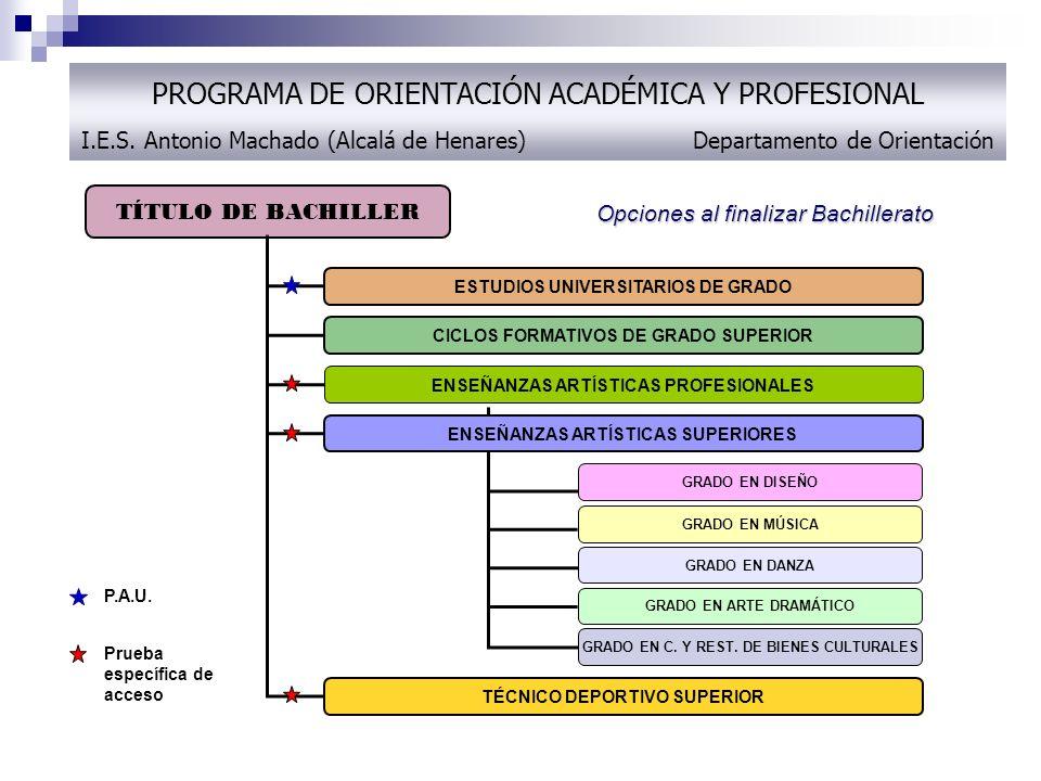 PROGRAMA DE ORIENTACIÓN ACADÉMICA Y PROFESIONAL I. E. S