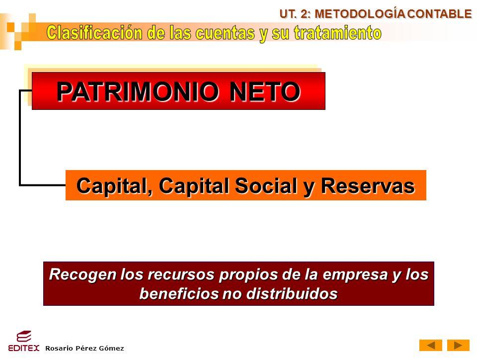 PATRIMONIO NETO Capital, Capital Social y Reservas