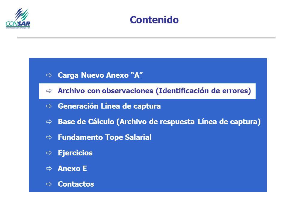 Contenido Carga Nuevo Anexo A