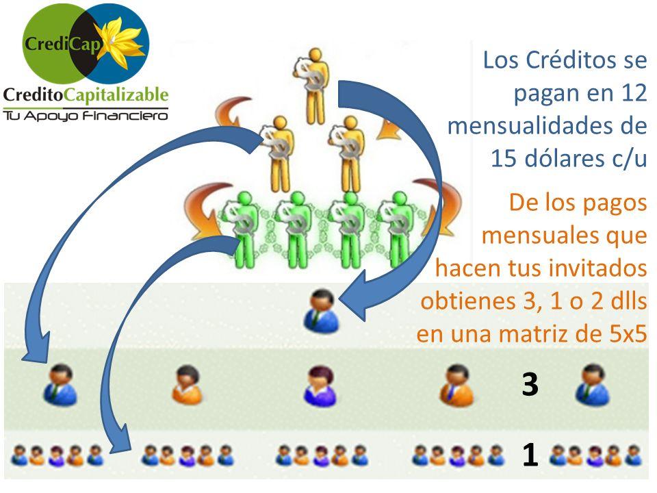 3 1 Los Créditos se pagan en 12 mensualidades de 15 dólares c/u