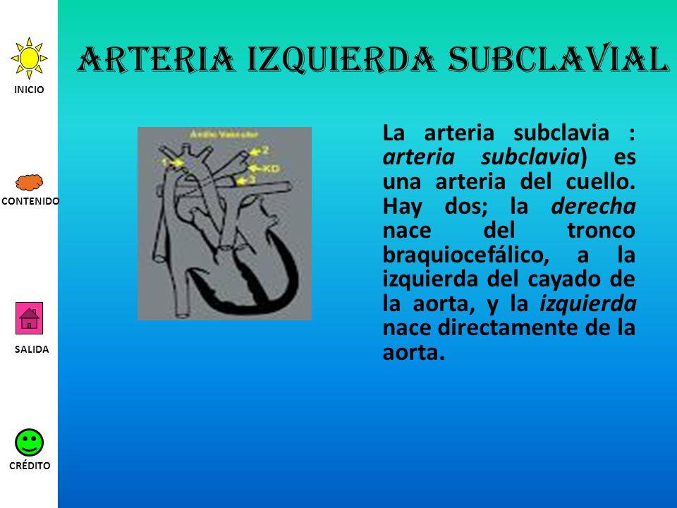 Arteria izquierda subclavial