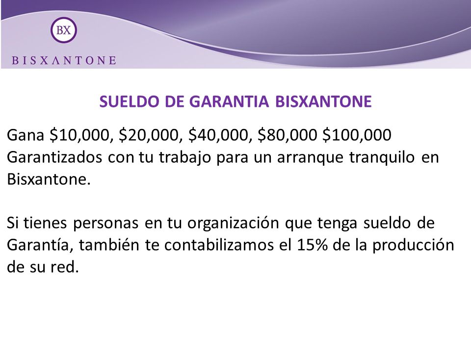 SUELDO DE GARANTIA BISXANTONE
