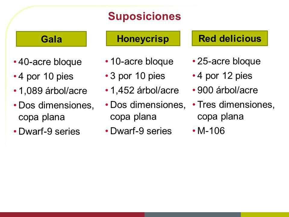 Suposiciones Gala Honeycrisp Red delicious 40-acre bloque