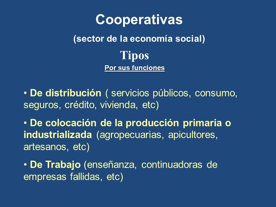 (sector de la economía social)