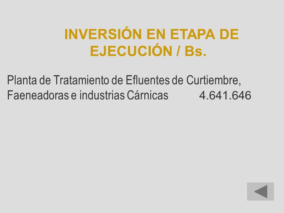 INVERSIÓN EN ETAPA DE EJECUCIÓN / Bs.