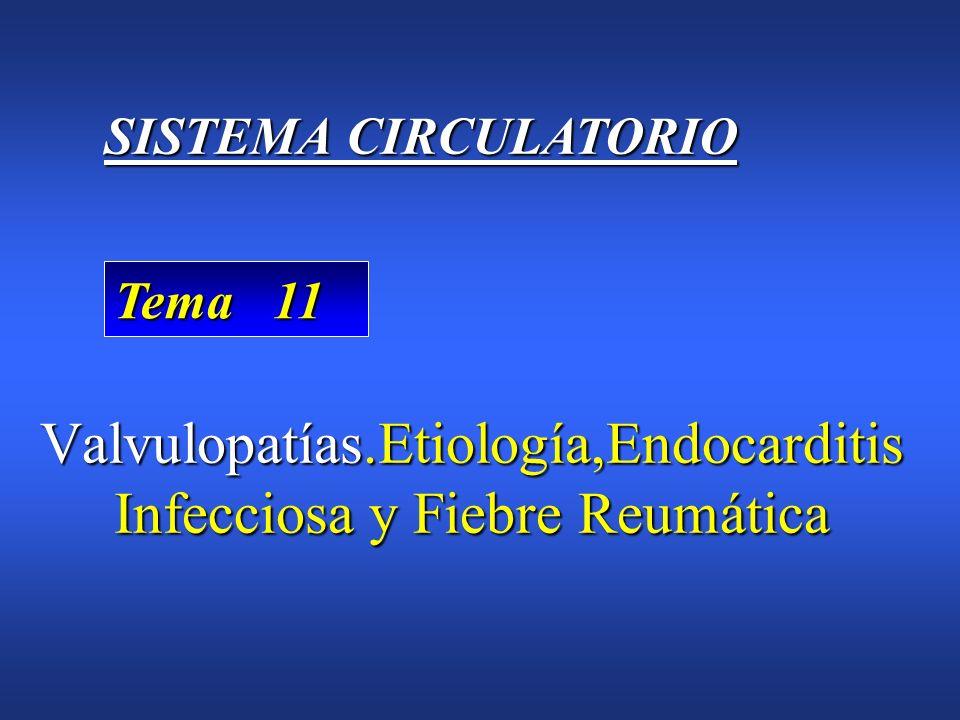 Valvulopatías.Etiología,Endocarditis Infecciosa y Fiebre Reumática