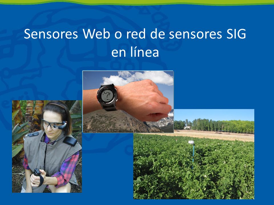 Sensores Web o red de sensores SIG en línea