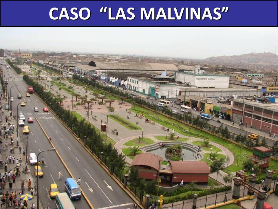 CASO LAS MALVINAS