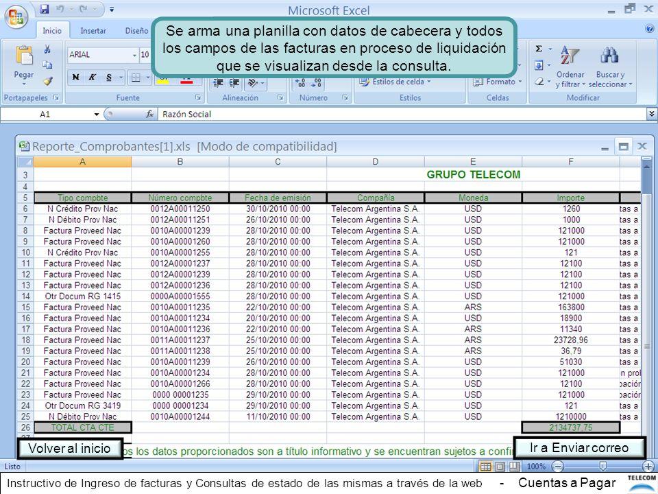 Se arma una planilla con datos de cabecera y todos los campos de las facturas en proceso de liquidación que se visualizan desde la consulta.