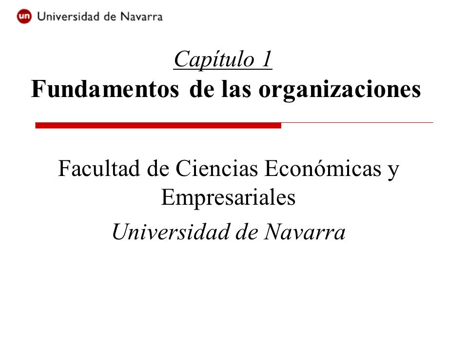 Capítulo 1 Fundamentos de las organizaciones
