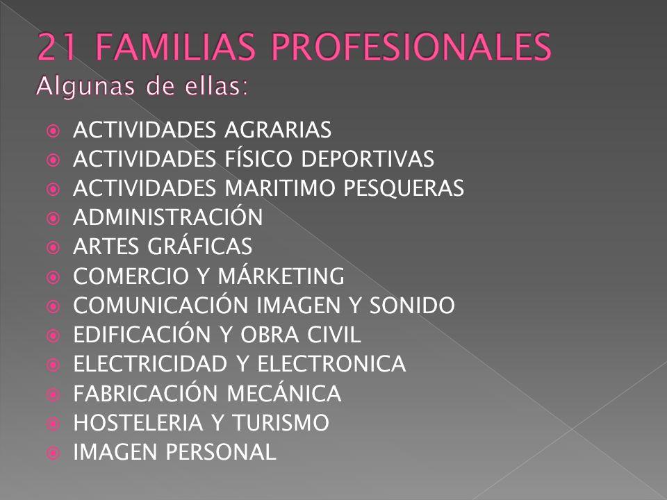 21 FAMILIAS PROFESIONALES Algunas de ellas:
