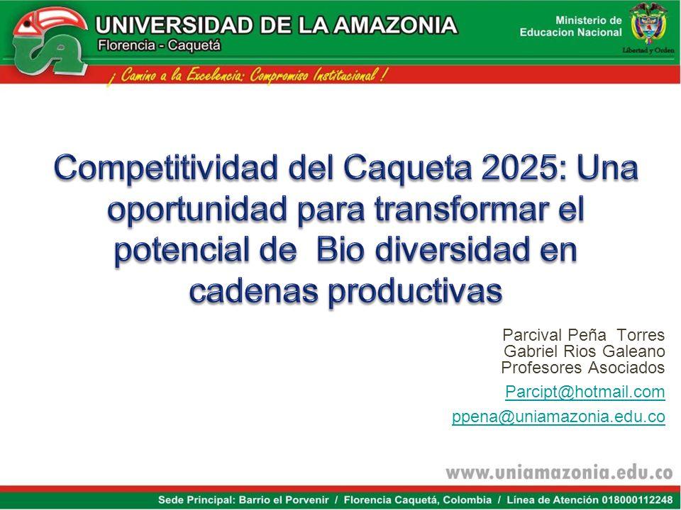 Competitividad del Caqueta 2025: Una oportunidad para transformar el potencial de Bio diversidad en cadenas productivas