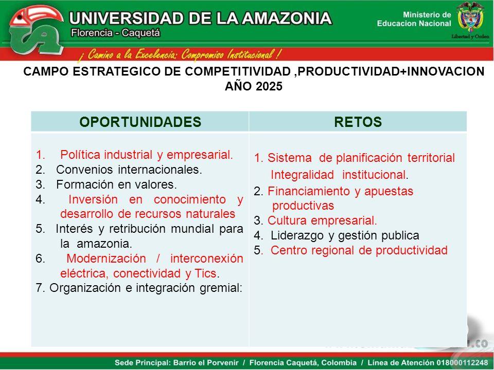 CAMPO ESTRATEGICO DE COMPETITIVIDAD ,PRODUCTIVIDAD+INNOVACION
