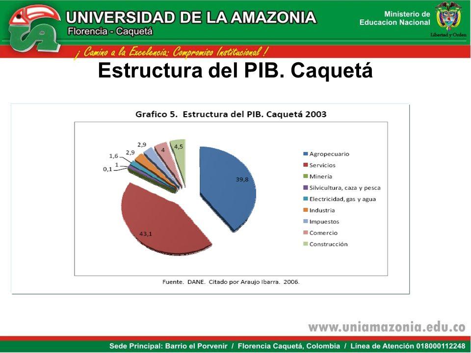 Estructura del PIB. Caquetá