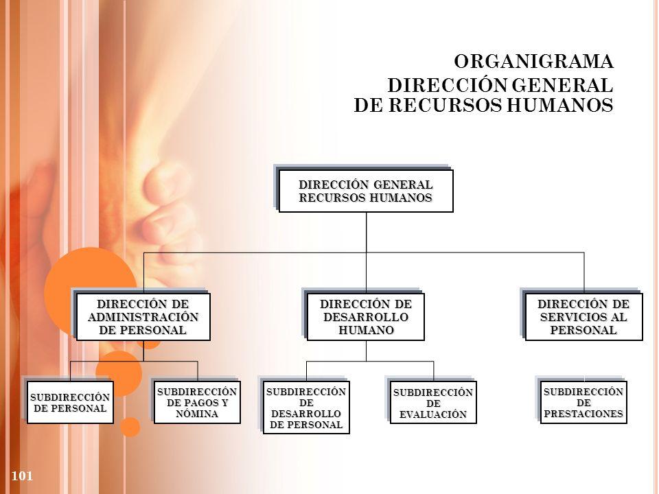 ORGANIGRAMA DIRECCIÓN GENERAL DE RECURSOS HUMANOS DIRECCIÓN GENERAL