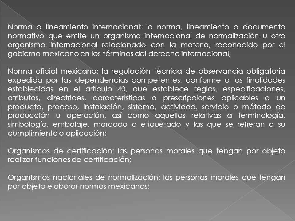 Norma o lineamiento internacional: la norma, lineamiento o documento normativo que emite un organismo internacional de normalización u otro organismo internacional relacionado con la materia, reconocido por el gobierno mexicano en los términos del derecho internacional;