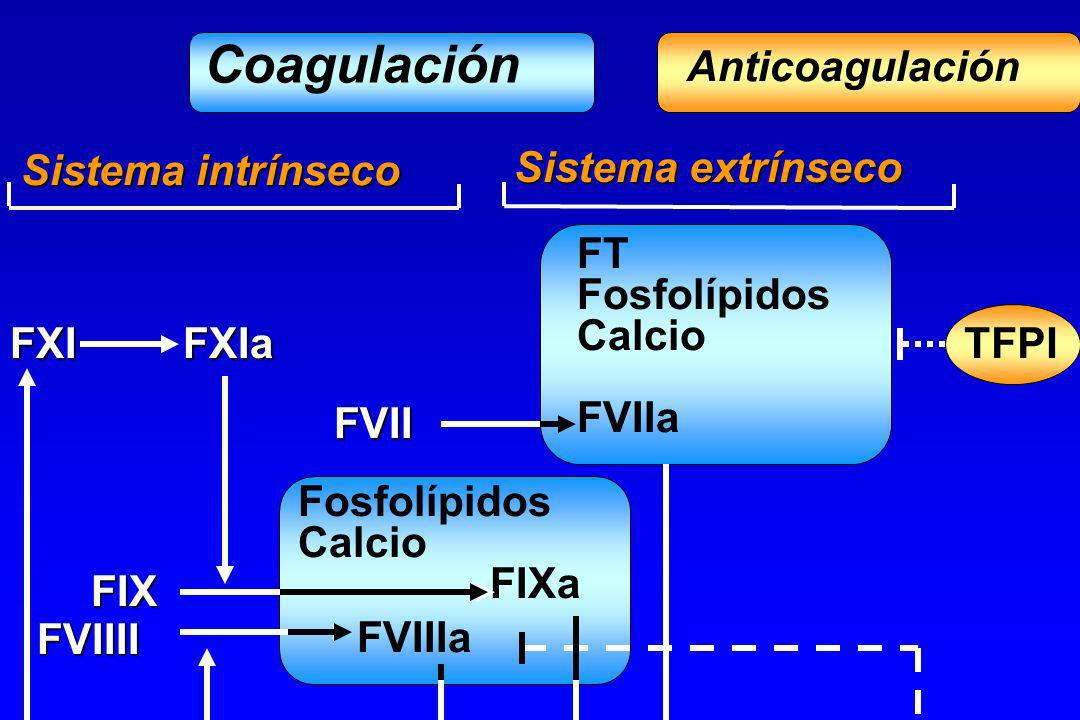 Coagulación Anticoagulación Sistema intrínseco Sistema extrínseco FT