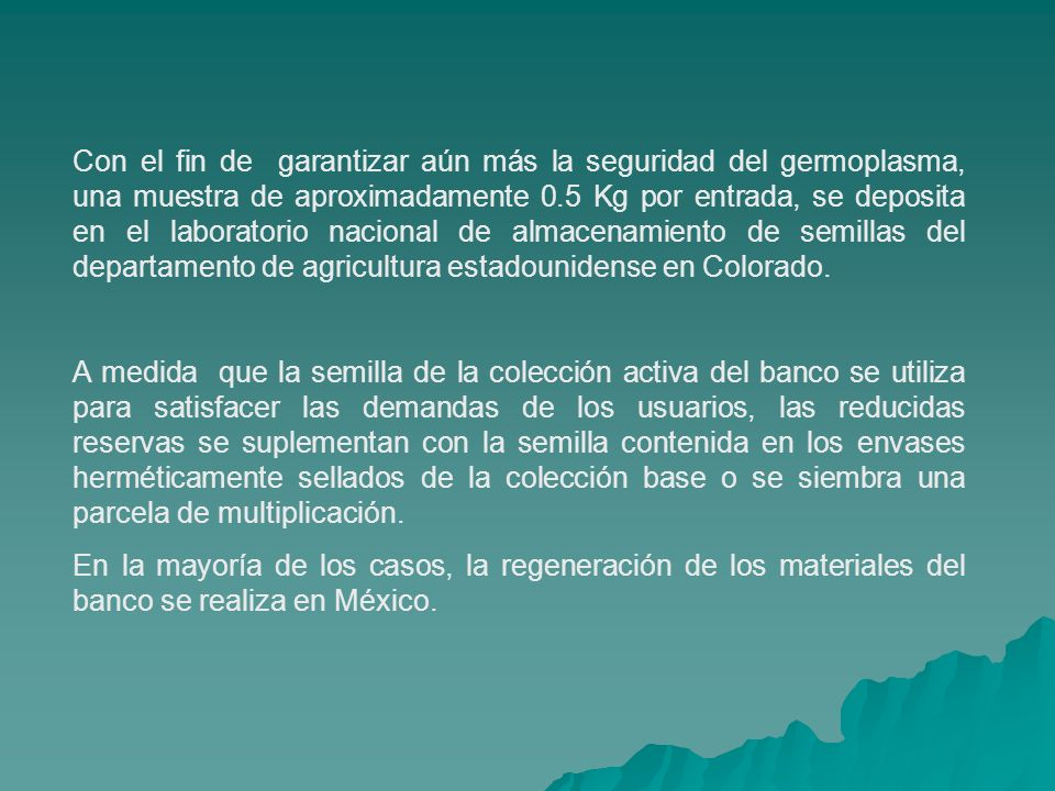 Con el fin de garantizar aún más la seguridad del germoplasma, una muestra de aproximadamente 0.5 Kg por entrada, se deposita en el laboratorio nacional de almacenamiento de semillas del departamento de agricultura estadounidense en Colorado.