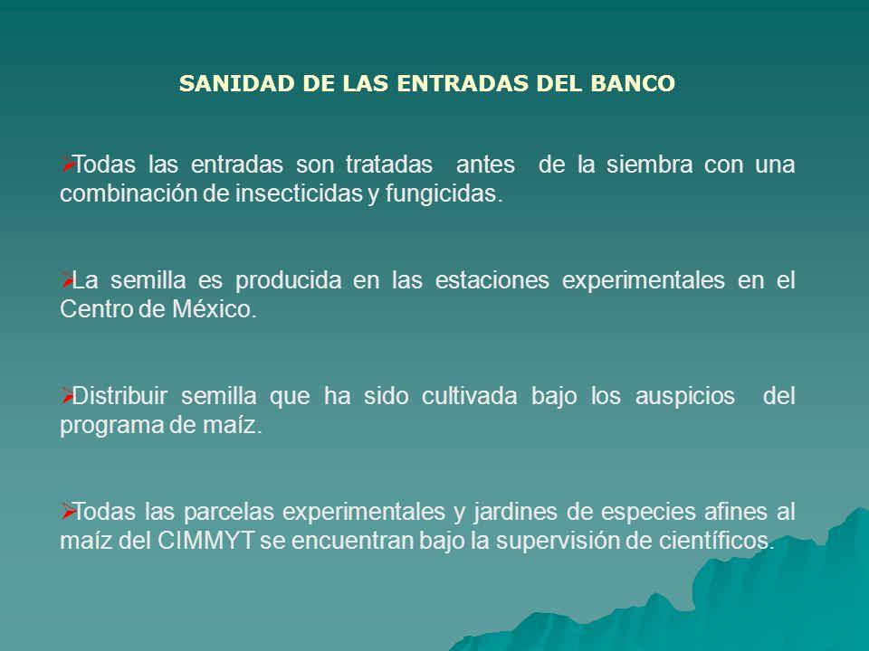 SANIDAD DE LAS ENTRADAS DEL BANCO