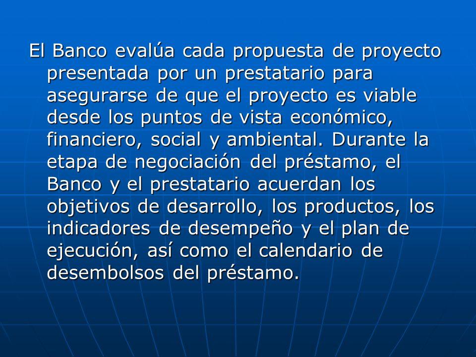 El Banco evalúa cada propuesta de proyecto presentada por un prestatario para asegurarse de que el proyecto es viable desde los puntos de vista económico, financiero, social y ambiental.