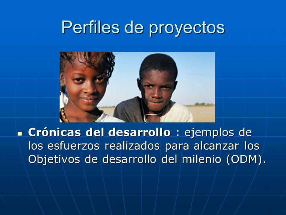 Perfiles de proyectos Crónicas del desarrollo : ejemplos de los esfuerzos realizados para alcanzar los Objetivos de desarrollo del milenio (ODM).
