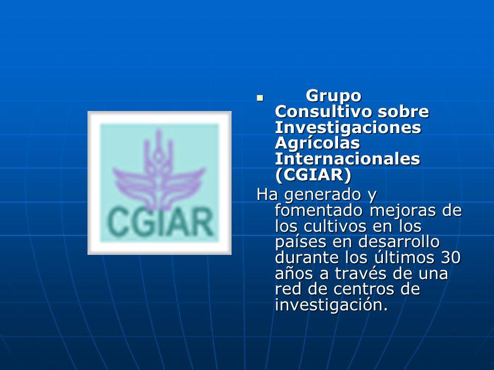 Grupo Consultivo sobre Investigaciones Agrícolas Internacionales (CGIAR)