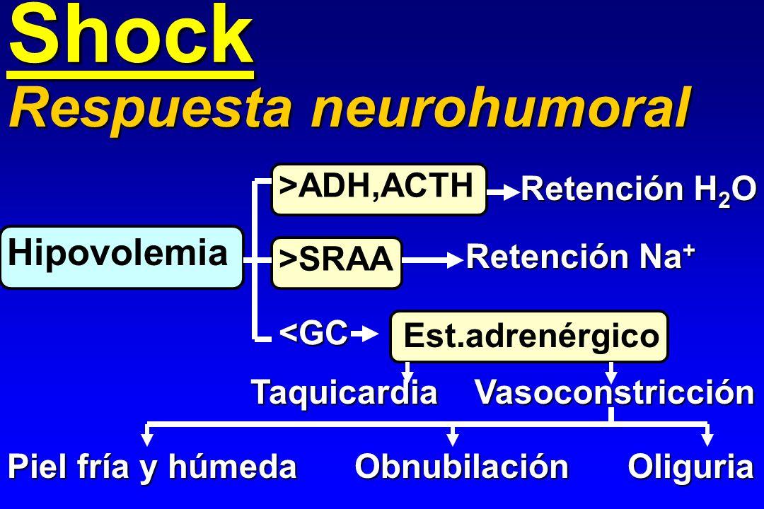 Shock Respuesta neurohumoral Hipovolemia >ADH,ACTH Retención H2O