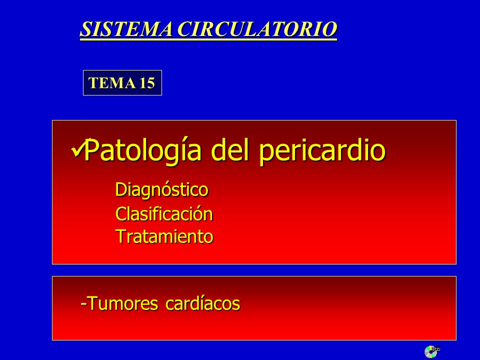 SISTEMA CIRCULATORIOTEMA 15.