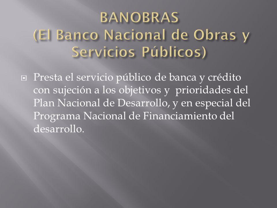 BANOBRAS (El Banco Nacional de Obras y Servicios Públicos)