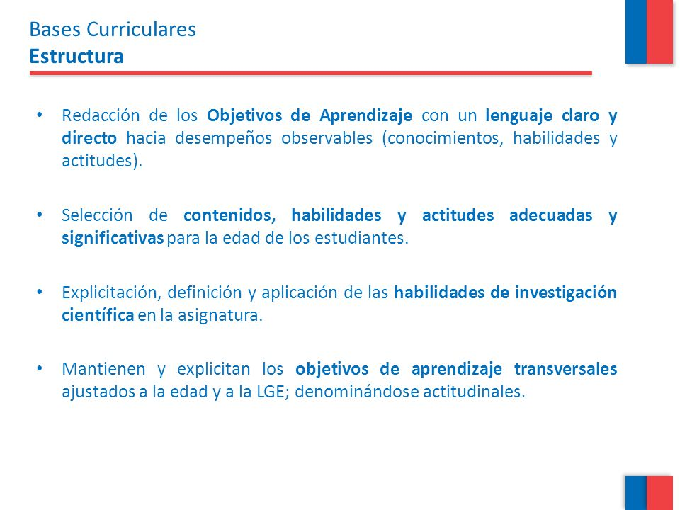 Bases Curriculares Estructura