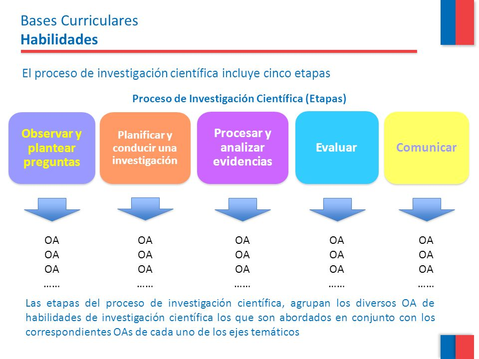 Bases Curriculares Habilidades