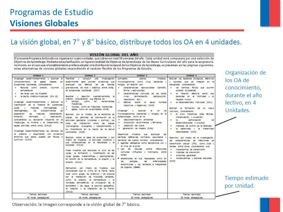 Programas de Estudio Visiones Globales
